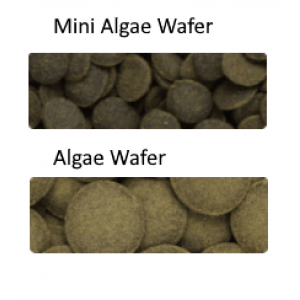 Hikari Tropical Algae Wafers Pellet Size