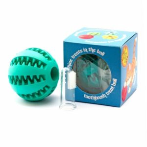 Toothbrush treat ball