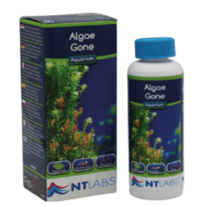 NT Labs Algae Gone at Rebel Pets