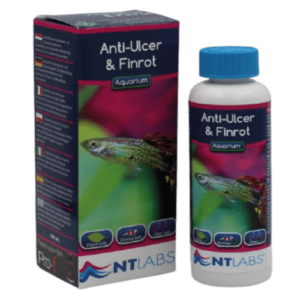 NT Labs Anti-Ulcer & Finrot at Rebel Pets